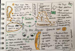 Agile & Management 3.0